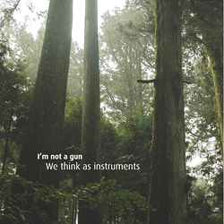 I m not a gun - We think as instruments